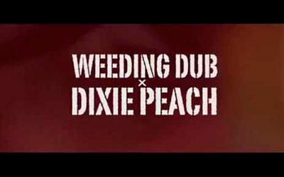 Weeding Dub Make Dem Know feat. Dixie Peach 3